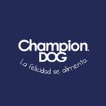 logoweb-champion